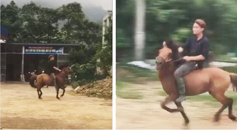 Sợ bị CSGT phạt vi phạm nồng độ cồn, nam thanh niên cưỡi ngựa đi nhậu.