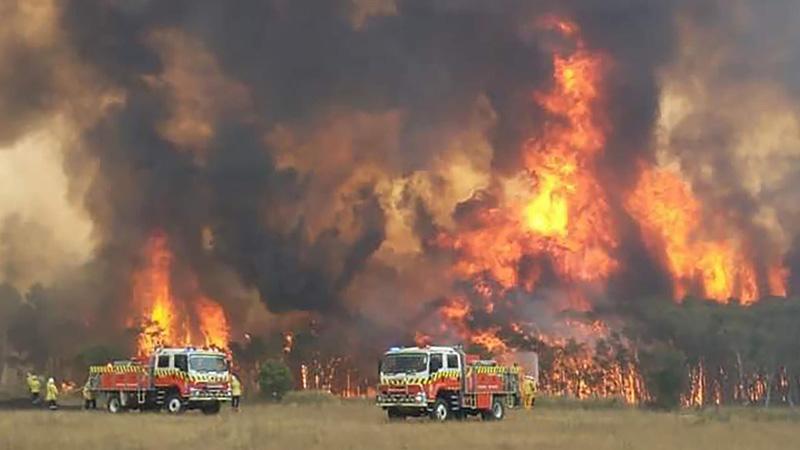 Bầu trời rực lửa ở Úc những ngày ấy đã khiến con người không khỏi rùng mình, nó cho con người ta một cảm giác về cuộc sống mong manh của nhân loại