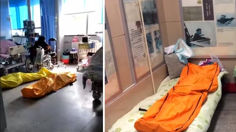 Video ở bệnh viện Vũ Hán: Xác chết nằm la liệt trên hành lang và trong phòng bệnh (ảnh 1)