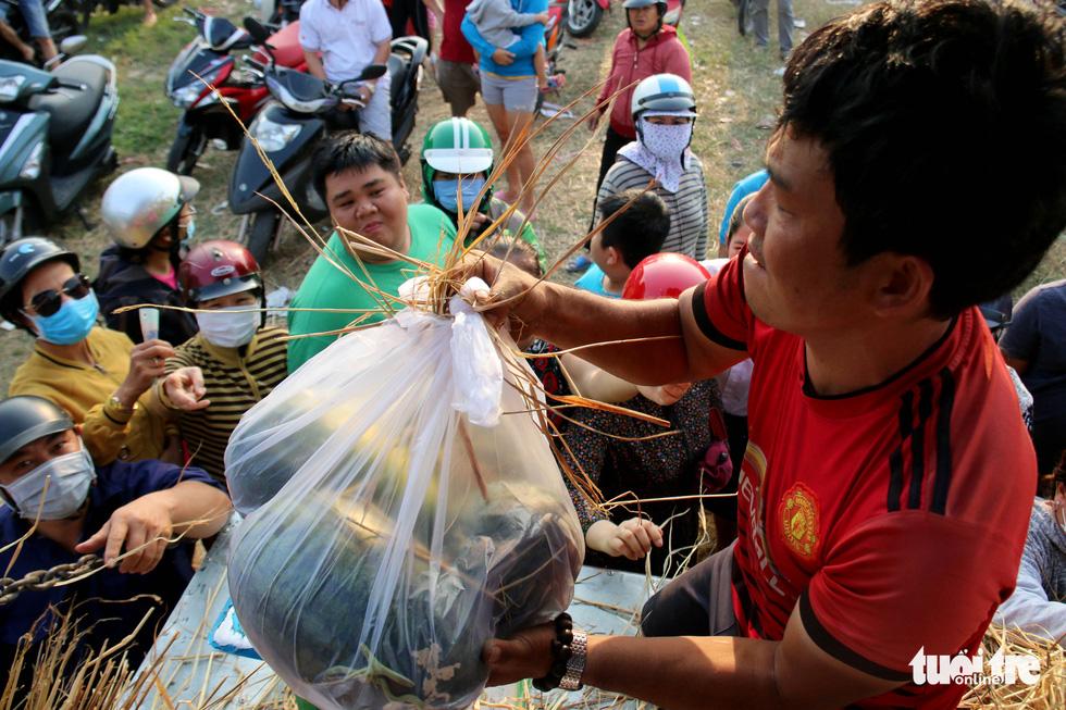 Một người đàn ông mua một lúc 4 trái dưa hấu với giá bán 5.000 đồng/kg. (Ảnh quatuoitre)
