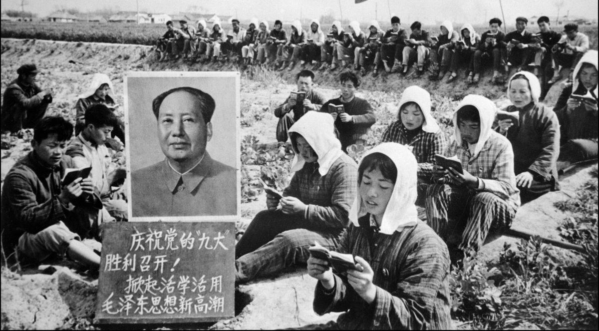 Nông dân đọc sách của Chủ tịch Mao Trạch Đông.