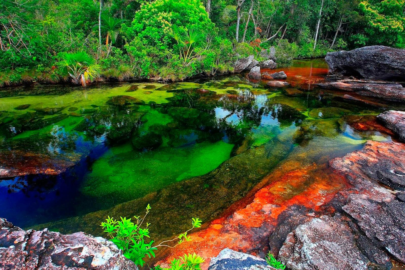Sông Cano Cristales hóa sắc cầu vồng