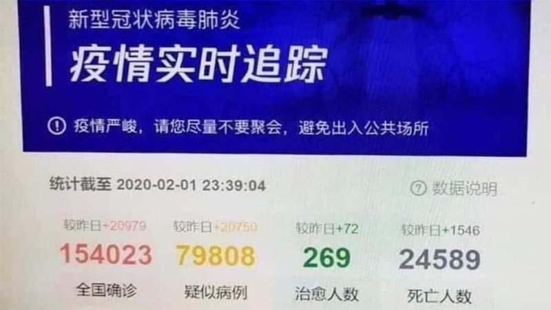 Số liệu người tử vong trong dịch viêm phổi Vũ Hán.