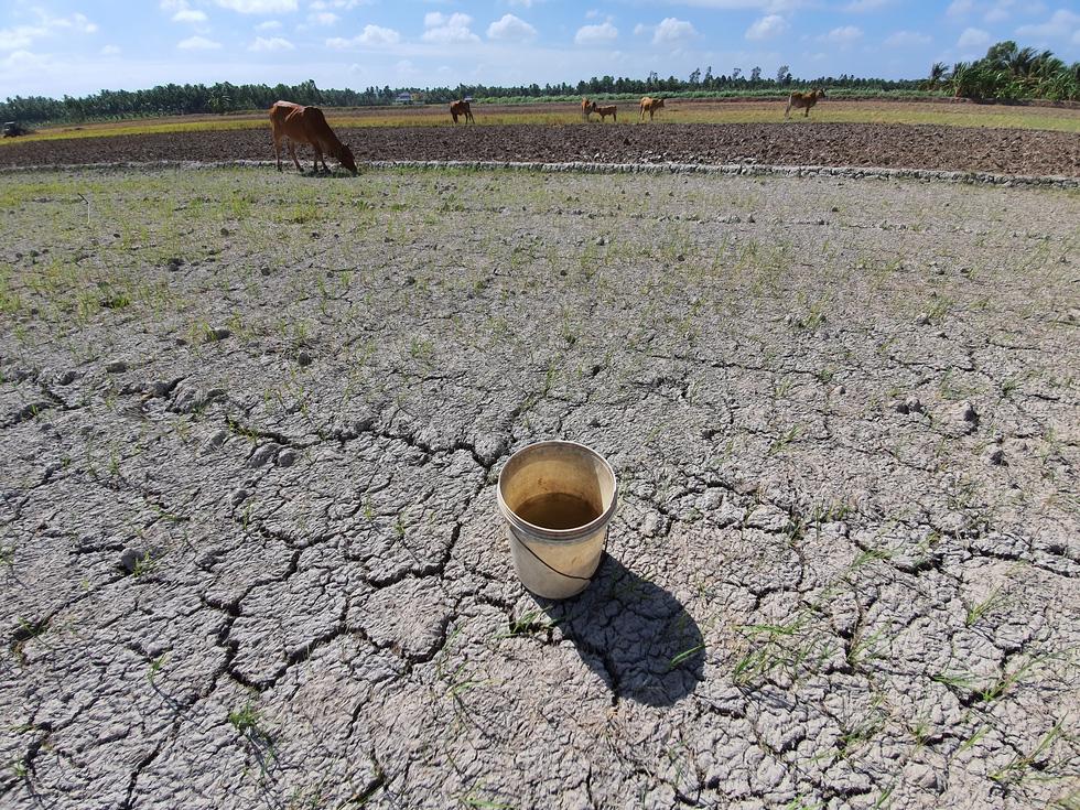 Trung Quốc tuyên bố xả đập thủy điện, nhưng nước không tới được ĐBSCL 4