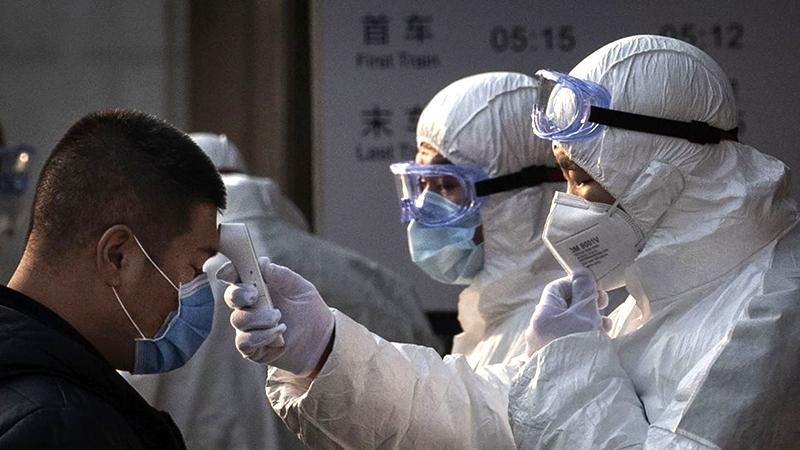 Chuyên gia dự đoán Vũ Hán có 500 ngàn người nhiễm bệnh, hai tuần tới là thời gian then chốt (ảnh 2)