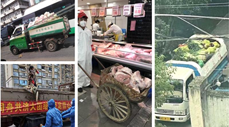 Vũ Hán: Khu dân cư dùng xe chở rác để vận chuyển đồ ăn khiến dân chúng phẫn nộ (ảnh 1)