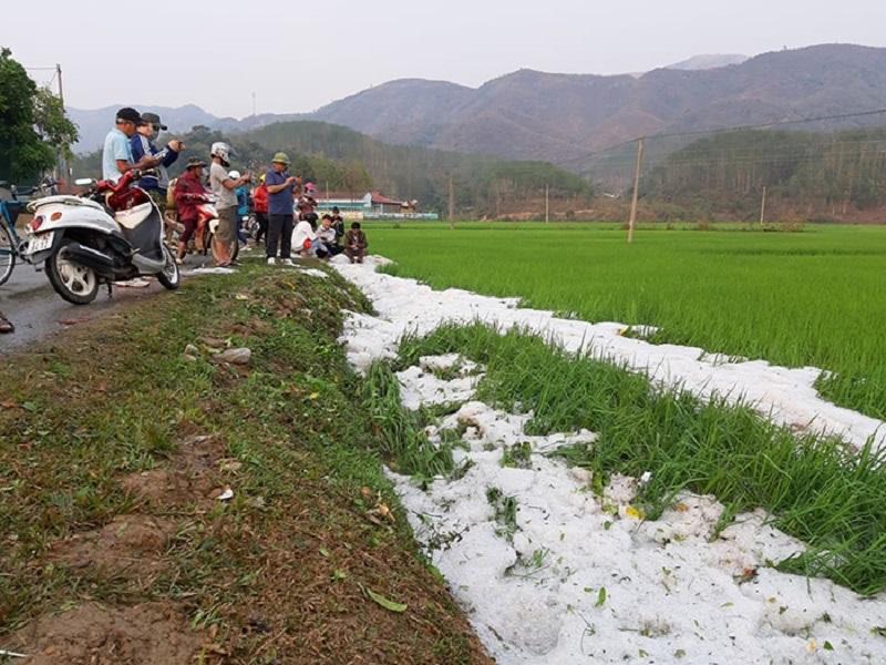 Ít nhất 4 trận mưa đá đã xảy ra trong tháng 3 tại các tỉnh phía Bắc 2