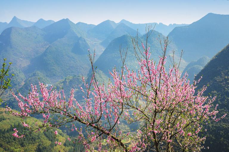 Tiết khí của mùa xuân ảnh hưởng như thế nào đến cơ thể?