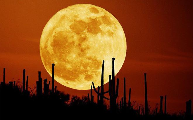 siêu trăng sẽ đạt kích thước lớn nhất vào lúc 0:48 phút ngày 10/3.