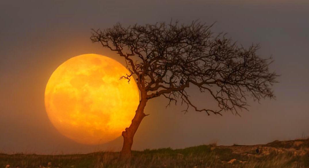 năm 2020 sẽ xuất hiện 4 lần hiện tượng siêu trăng trên thế giới.