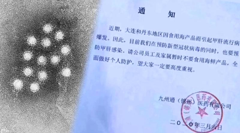 Trung Quốc: Khu vực Đại Liên, Đan Đông bùng phát bệnh viêm gan (ảnh 1)
