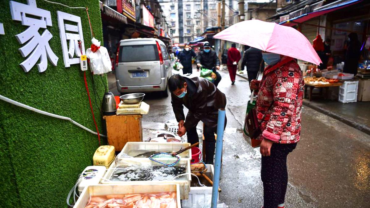 Không chỉ người Vũ Hán, cá Vũ Hán cũng bị kỳ thị vì nỗi ám ảnh dịch bệnh (ảnh 1)