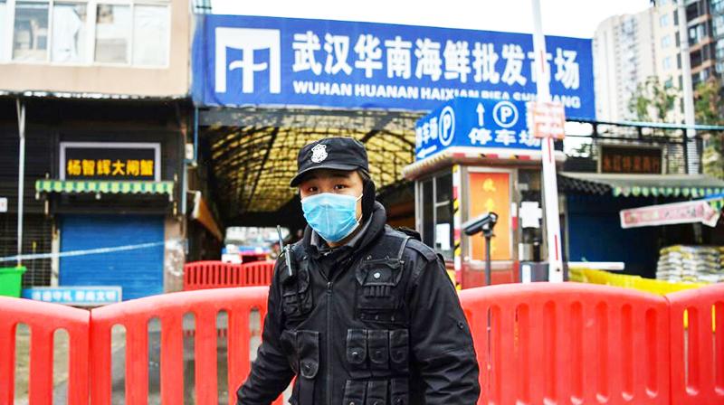 Mấy ngày trước, trên mạng lan truyền một đoạn ghi âm nói chuyện của một người trong chợ hải sản Hoa Nam - Vũ Hán, nói rằng có rất nhiều người ở chợ không bị lây nhiễm, nguồn gốc thực sự của virus một lần nữa thu hút sự chú ý của ngoại giới.