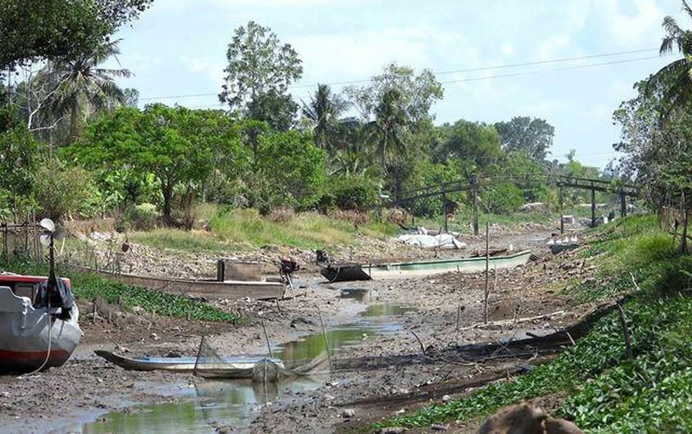 ĐBSCL Các con sông cạn trơ đáy, những cánh đồng tan hoang