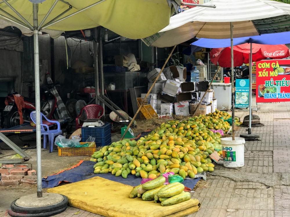 """Do dịch virus Vũ Hán """"xoài"""" chỉ còn 3.500 mỗi kg, nông dân vẫn ế ẩm 7"""