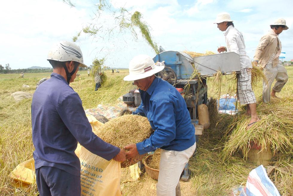 Việt Nam còn dư 6,7 triệu tấn gạo, Bộ Công Thương đề xuất cho tiếp tục xuất khẩu 5