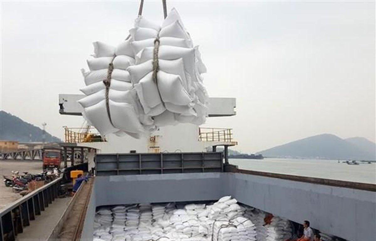 Nhiều doanh nghiệp xuất khẩu gạo 'xù' hợp đồng cấp gạo dự trữ quốc gia. (Ảnh qua dantri)