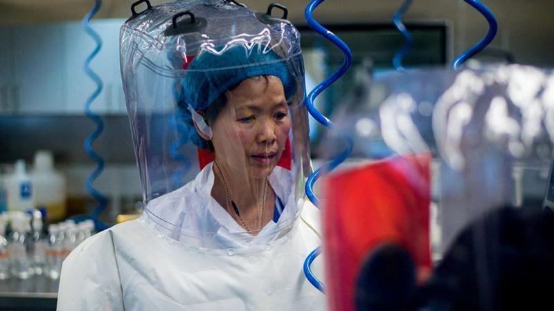 """Thạch Chính Lệ - nghiên cứu viên của viện virus Vũ Hán nói rằng, loại virus không xác định mà nhóm của bà phát hiện ra chỉ là """"phần nổi của tảng băng chìm"""", virus tồn tại ngoài tự nhiên, tương lai sẽ còn bùng phát một loại virus mới"""