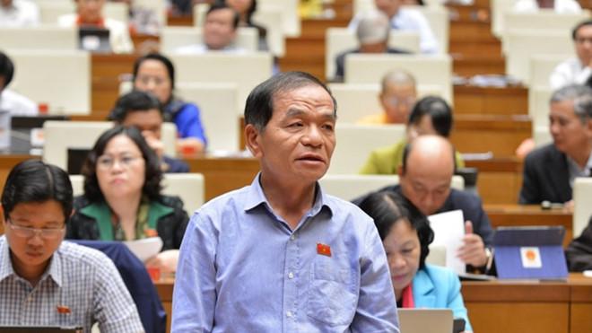 Lo ngại Trung Quốc thâu tóm đất, ĐBQH đề nghị xây dựng Luật An ninh kinh tế - Ảnh 3