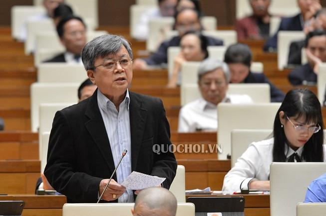 Lo ngại Trung Quốc thâu tóm đất, ĐBQH đề nghị xây dựng Luật An ninh kinh tế - Ảnh 2
