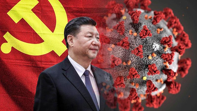 Tiêu Phàm nói rằng ông không tin vào số liệu người chết vì đại dịch virus Vũ Hán lần này mà chính quyền công bố.