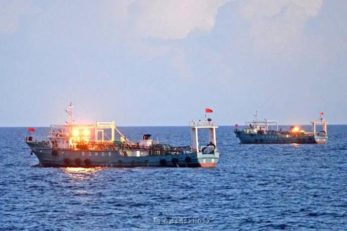 Tàu cá Trung Quốc hoạt động ở vùng biển thuộc quần đảo Natuna - Indonesia. (Ảnh nld)