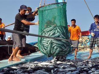 Trước lệnh cấm đánh bắt cá phi lý của chính quyền Trung Quốc, lãnh đạo Việt Nam khẳng định 'Cấm cứ cấm, đánh cứ đánh'. (Ảnh qua vietnamnet)