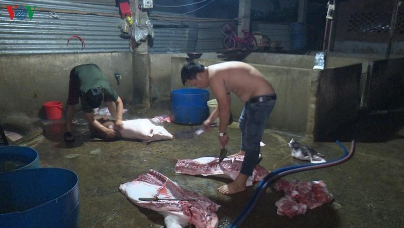 Hộ gia đình ông Phạm Văn Hà đang giết mổ heo lậu bị bắt quả tang. (Ảnh qua VOV)