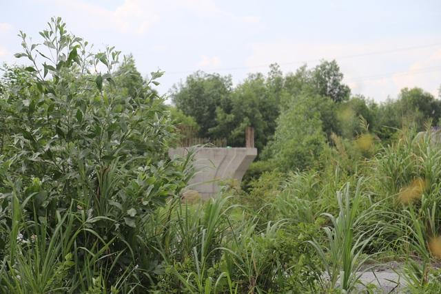 Trụ cầu ở gần điểm cuối tuyến kết nối vào đường dẫn cao tốc nằm trơ trọi giữa đám cây cỏ. (Ảnh qua dantri)