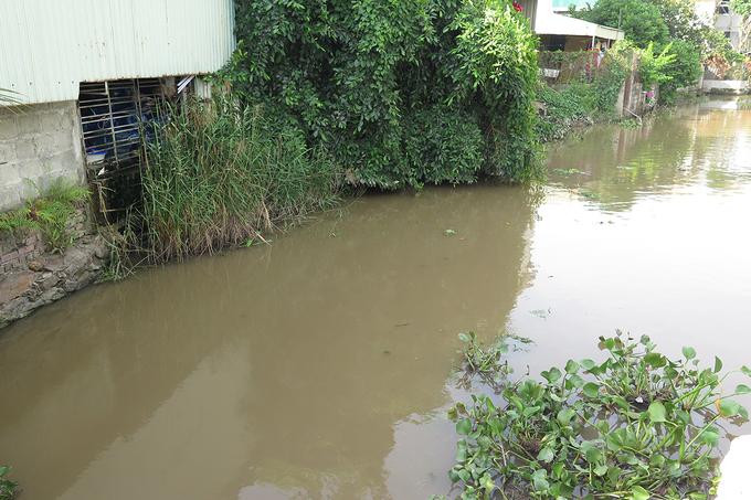 Mương nước thải sinh hoạt được Công ty TNHH Phúc Hà lấy để sản xuất nước tinh khiết. (Ảnh qua cand)