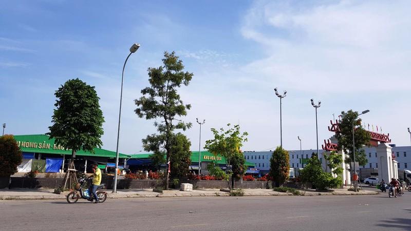 Dự án Chợ đầu mối rau, quả phường Sở Dầu, quận Hồng Bàng. (Ảnh qua nld)