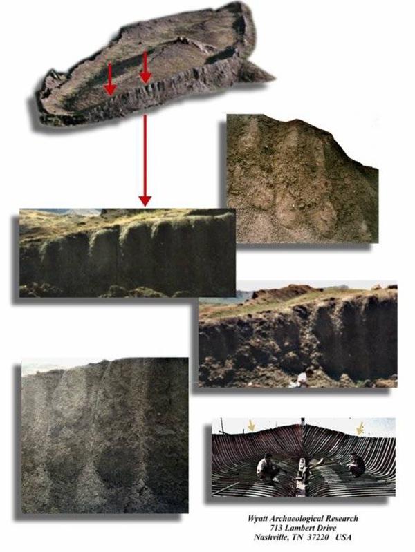 Gỗ hóa thạch của con tàu Noah đã được tìm thấy