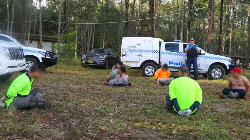 Úc: 14 sinh viên Việt phủ xanh đồi trọc bằng 13.000 cây… cần sa giá 40 triệu USD - Ảnh 1