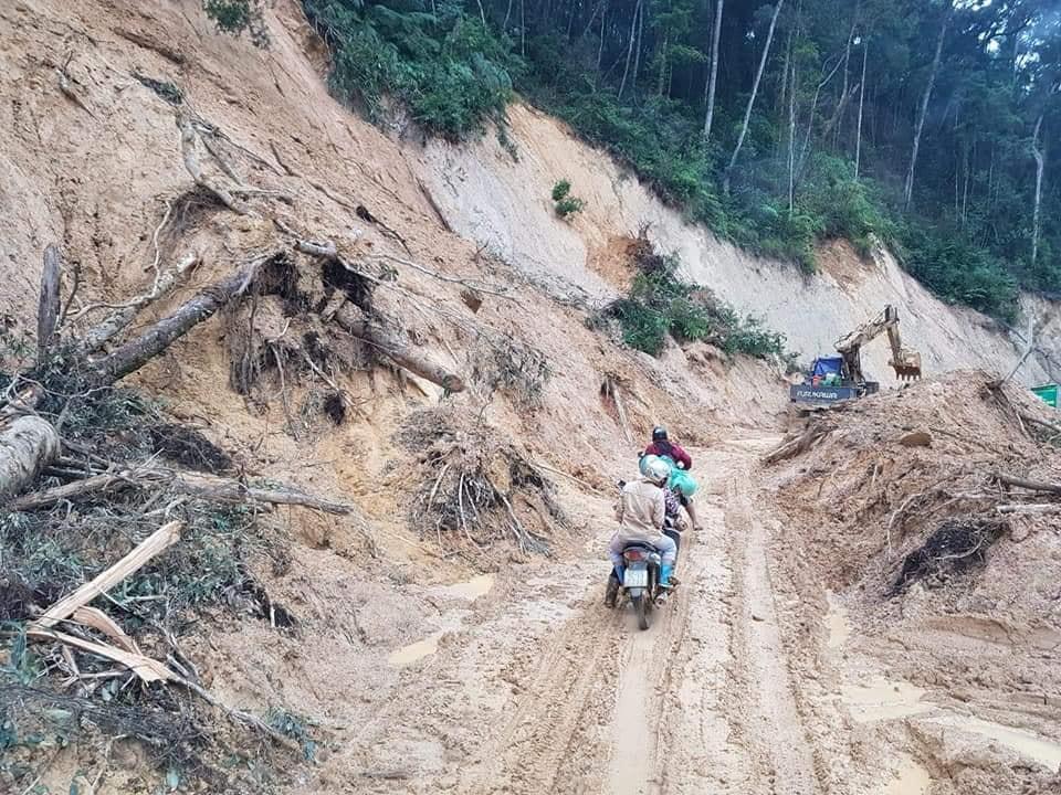 """Về một ông """"trùm"""" người Trung Quốc thâu tóm hàng trăm ngàn hec-ta rừng Việt Nam - Ảnh 2"""