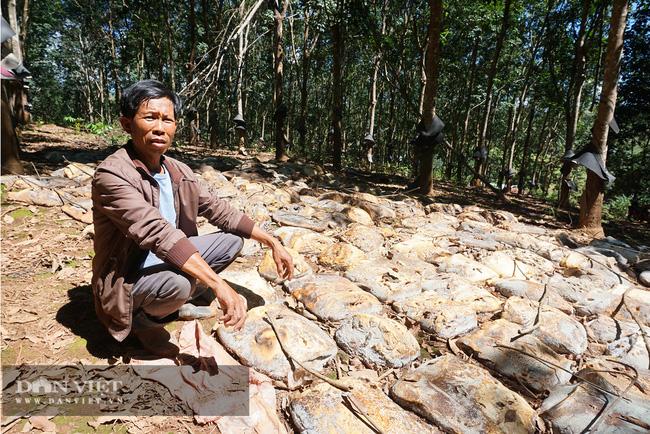 Thủy điện tích nước trái phép làm nông dân thiệt hại nặng hàng tỉ đồng bị phạt… 25 triệu đồng - Ảnh 2