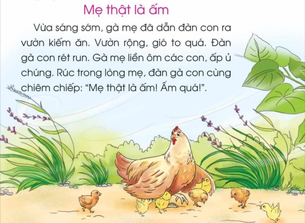 Công bố tài liệu chỉnh sửa SGK Tiếng Việt 1 bộ Cánh Diều - Ảnh 1