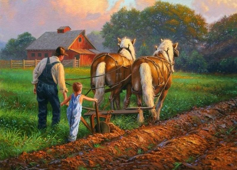 Nông dân Hoa Kỳ