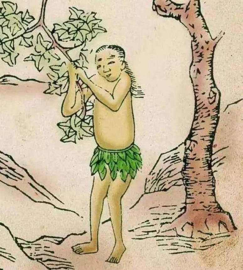 cây bất tử