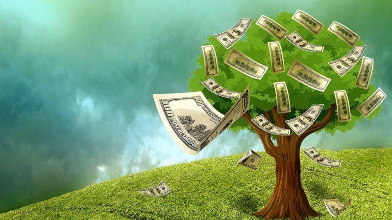 cây tiền