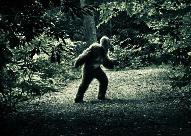 nhìn Bigfoot
