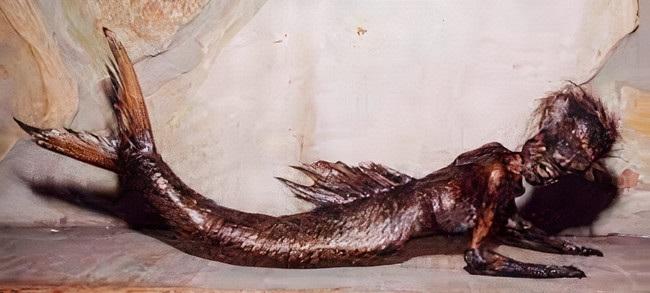 người cá