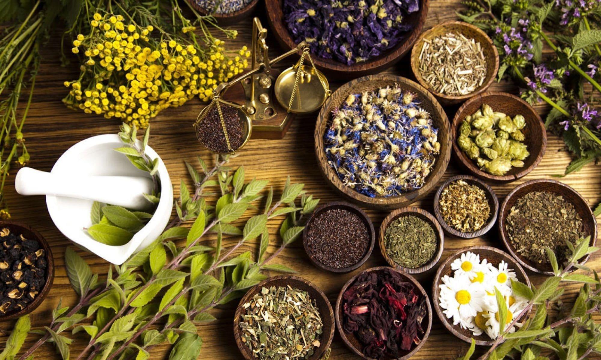 Wat is fytotherapie en hoe kan dit bijdragen aan mijn gezondheid?