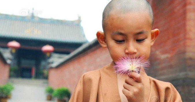 Lòng an định mới hiểu được vạn vật, tâm tĩnh lặng mới thấu được lòng người - ảnh 2