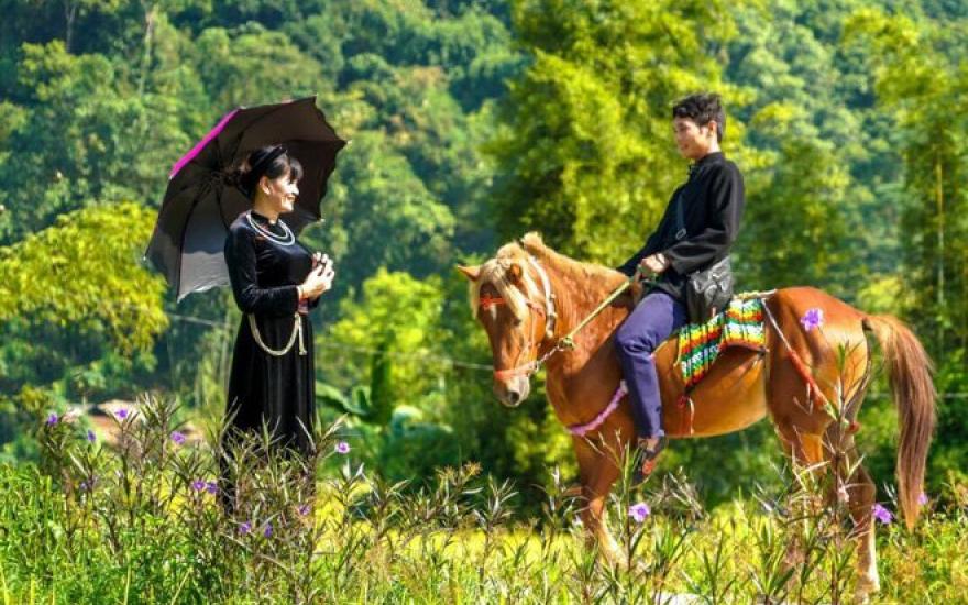 Độc đáo dịch vụ cưỡi ngựa homestay - Kênh truyền hình Đài Tiếng nói Việt Nam  - VOVTV