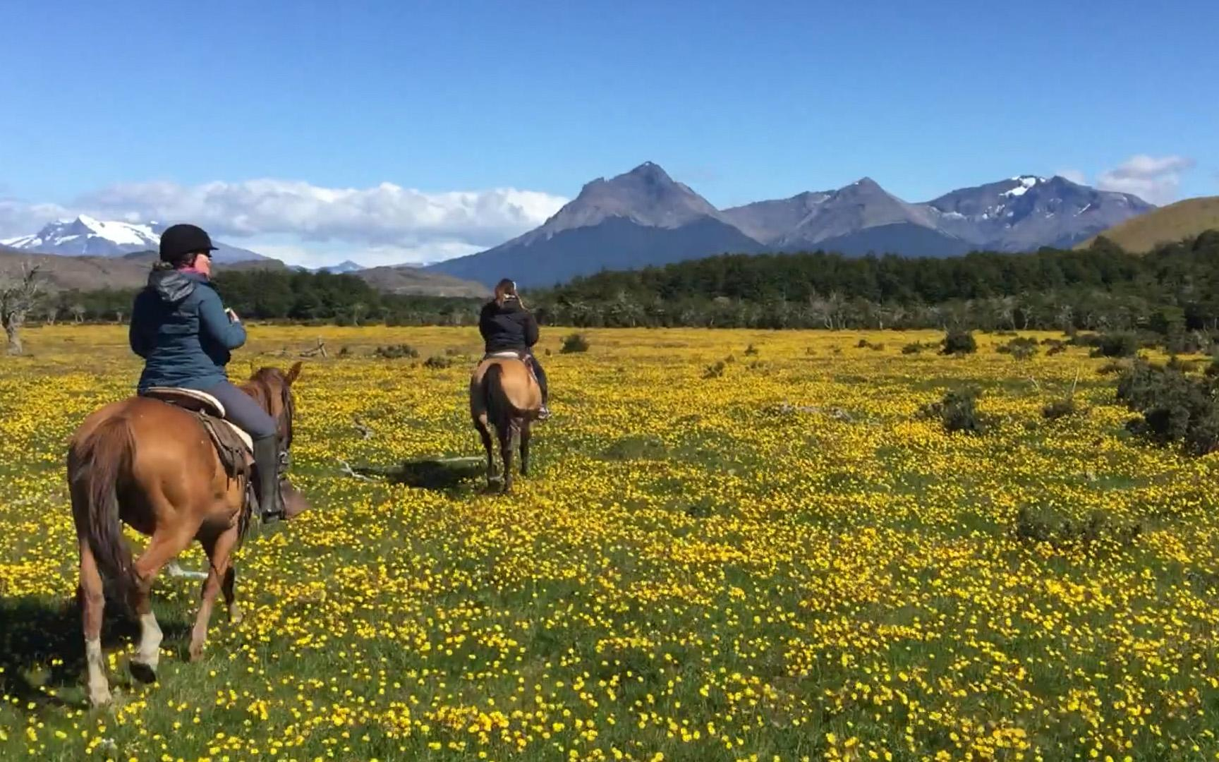 Jordan Harvey's 12-Day Itinerary Around Santiago, Patagonia, Easter Island,  and More   Travel + Leisure